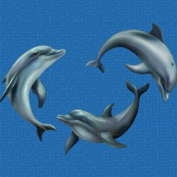 Mosaik motiv - Playing dolphins