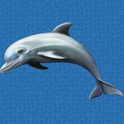 Mosaik motiv - Dolphin
